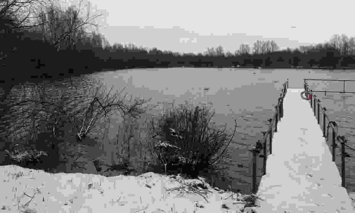 A snowy Wraysbury Lake (Phoebe Smith)