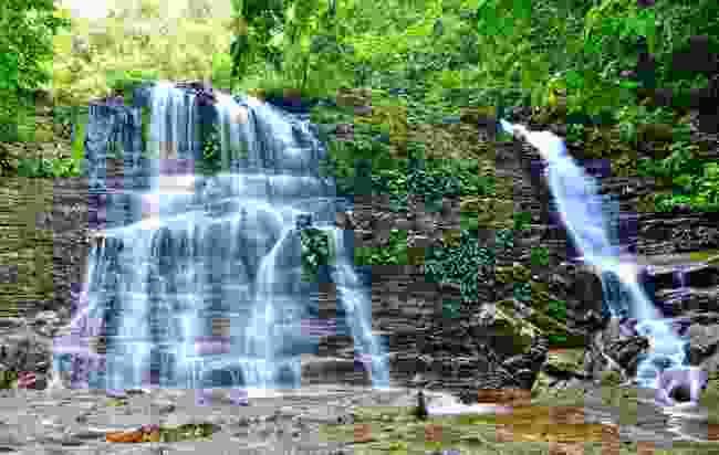 Seek out waterfalls in Kubah National Park (Shutterstock)