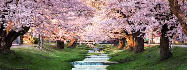 Things to do on the Diamond Route Japan (Shutterstock)