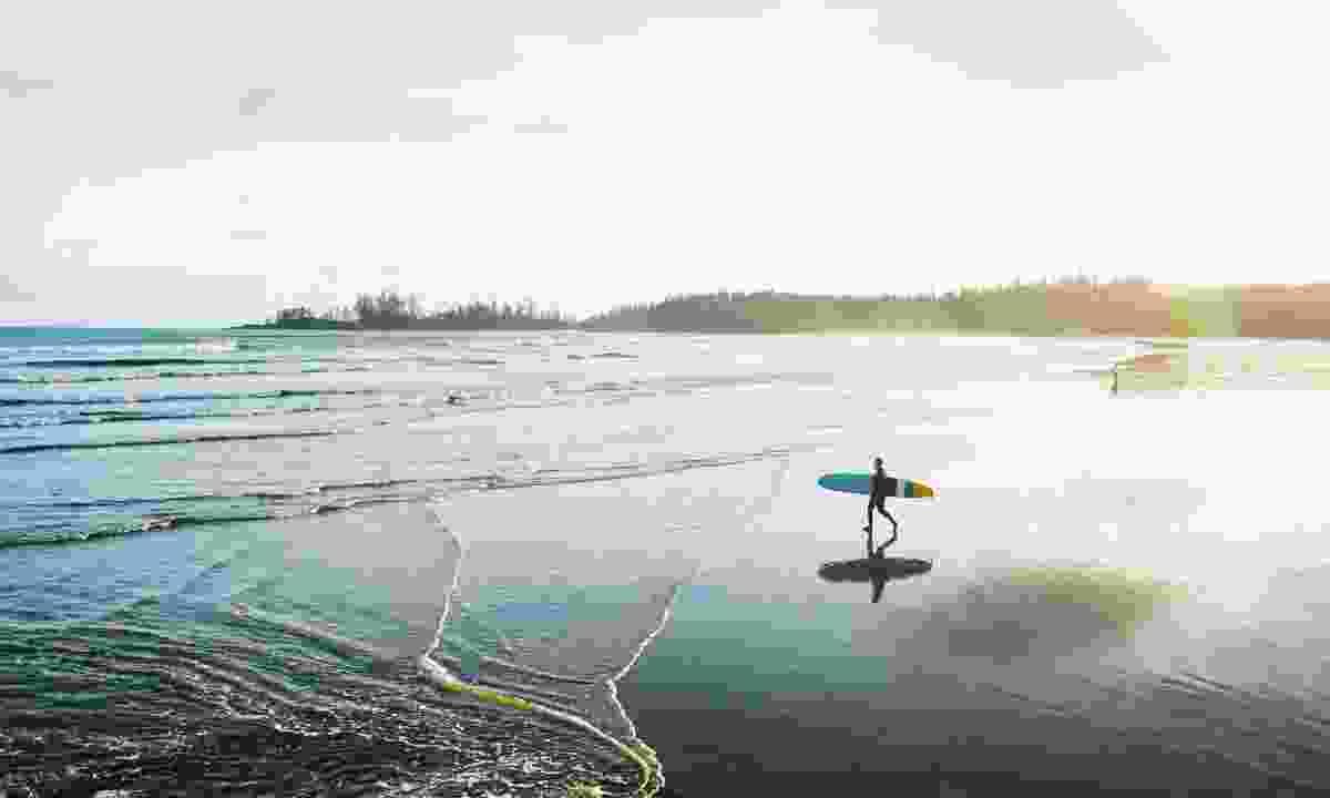 Surfer on the beach in Tofino (Destination BC/Ben Giesbrecht)