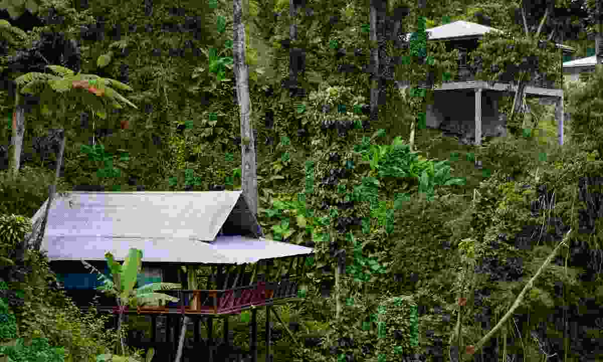 Enjoy many eco-friendly places on the island