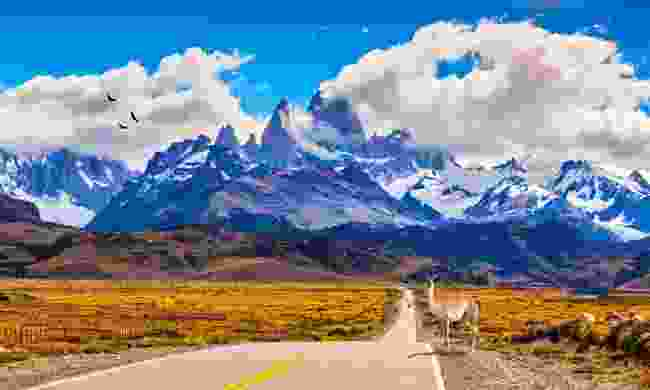 Highway crossing Patagonia leading towards Mount Fitzroy (Shutterstock)