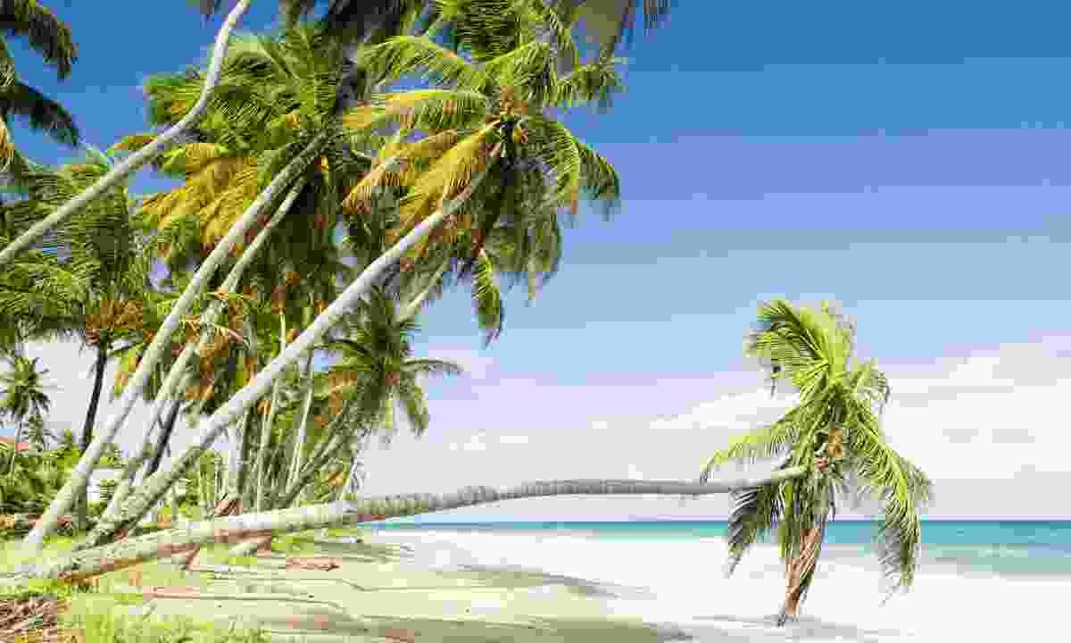 Sauteurs Beach (Dreamstime)