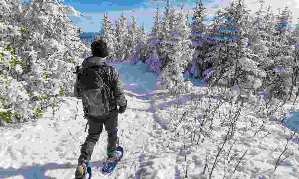 Snowshoeing in Canada (Dreamstime)