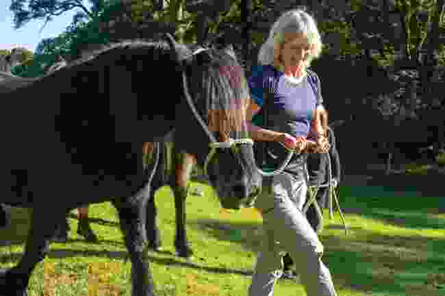 The author, Sue Watt, walking with Fairmile (Graham Wynne)