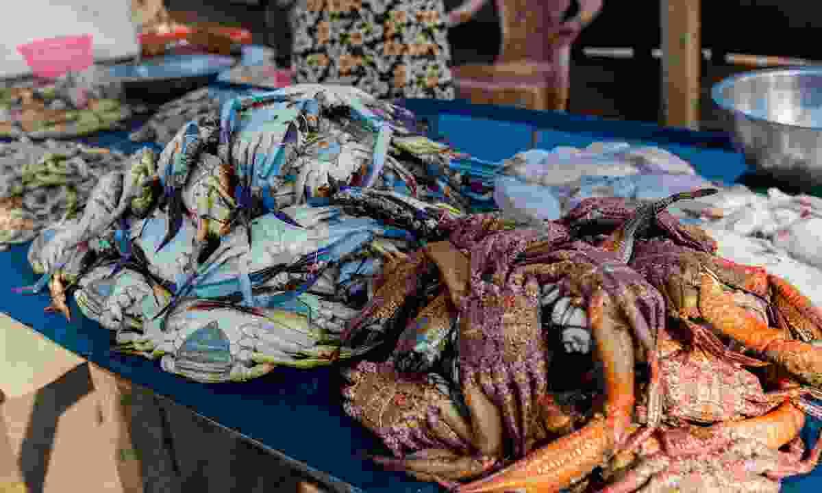 Fresh seafood at Negombo fish market (Intrepid Travel)