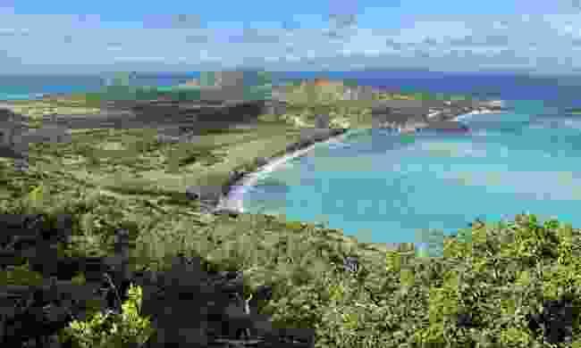 Lizard Island off the north east coast of Australia (Phoebe Smith)