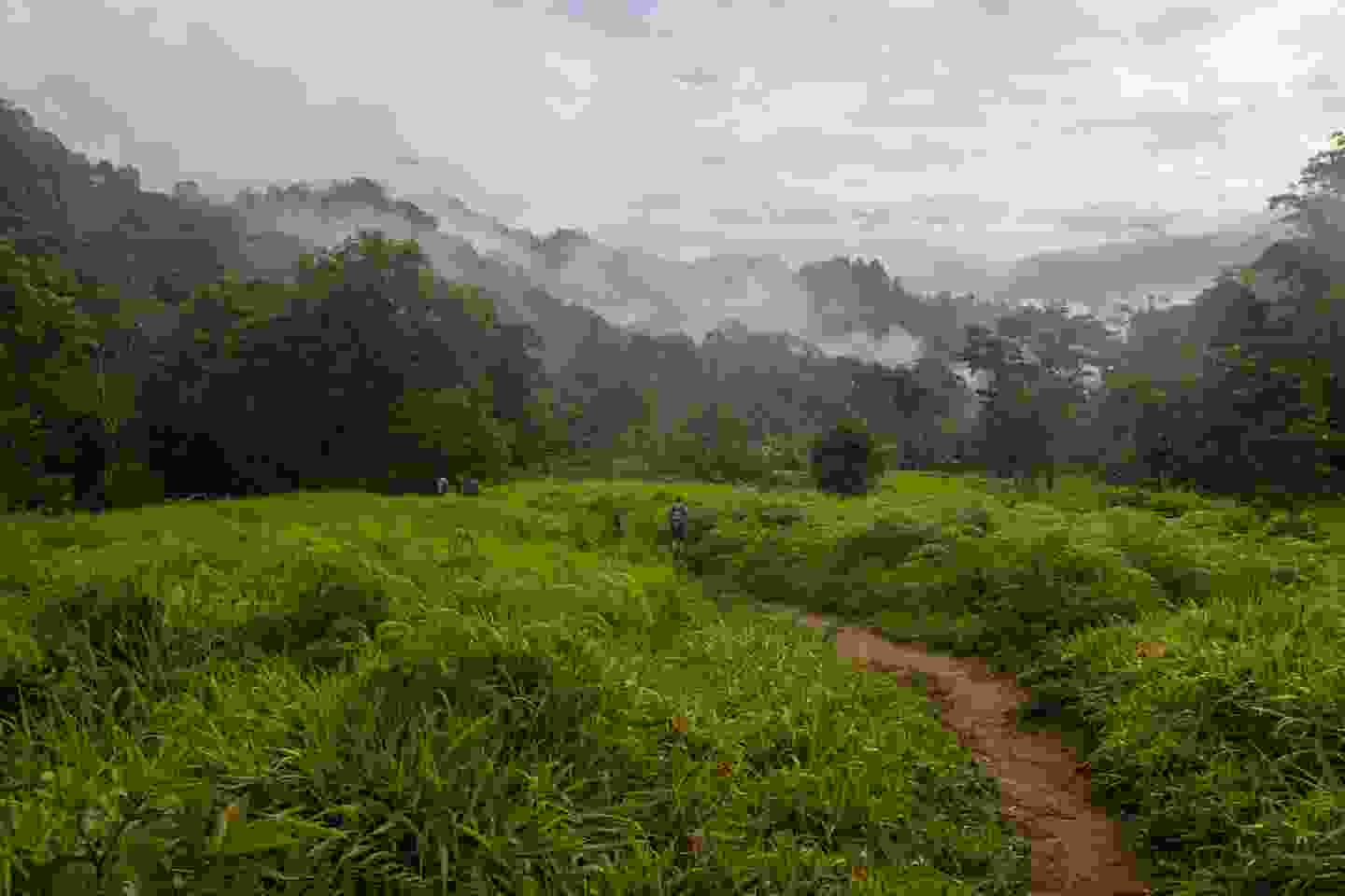 Hike to the lost city of Teyuna, Colombia (Shutterstock)