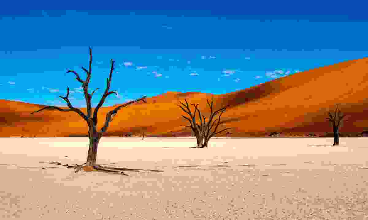 Namibia is famous for its sand dunes, Sossusvlei (Shutterstock)