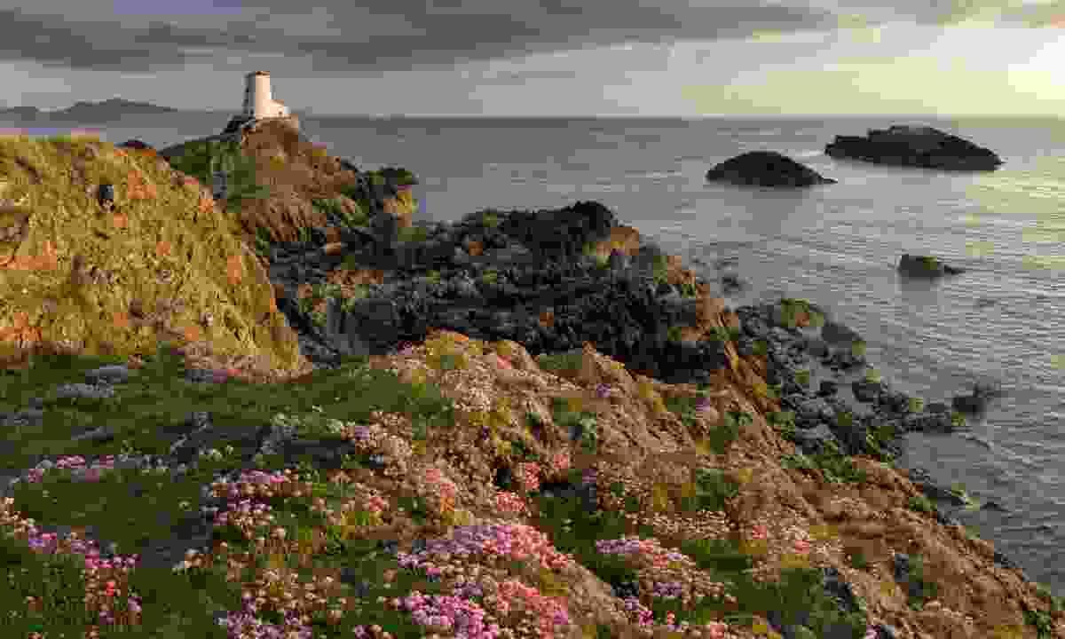Lover's Island Lighthouse, Ynys Llanddwyn (Shutterstock)