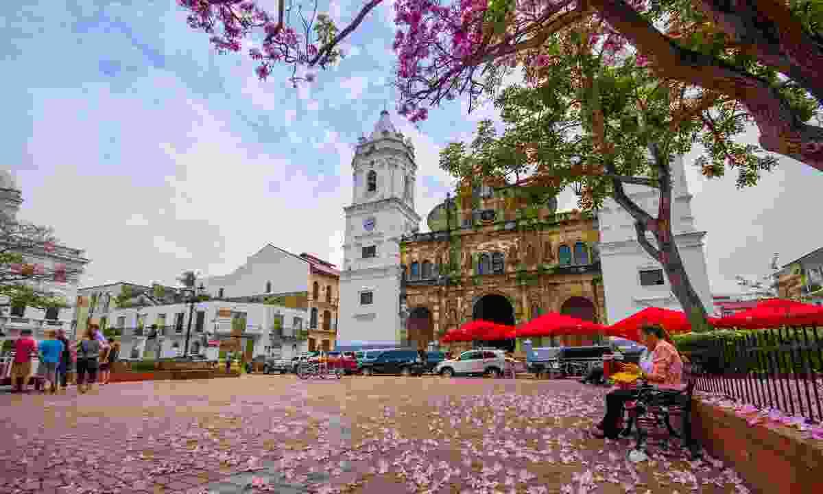 Sal Felipe Old Quarter in Casco Viejo, Panama City (Shutterstock)