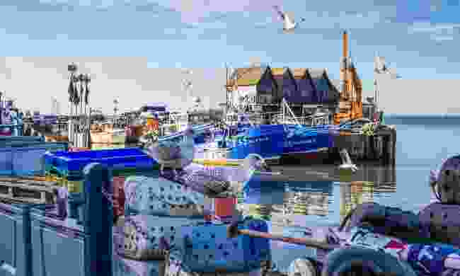 Whitstable Harbour (Shutterstock)