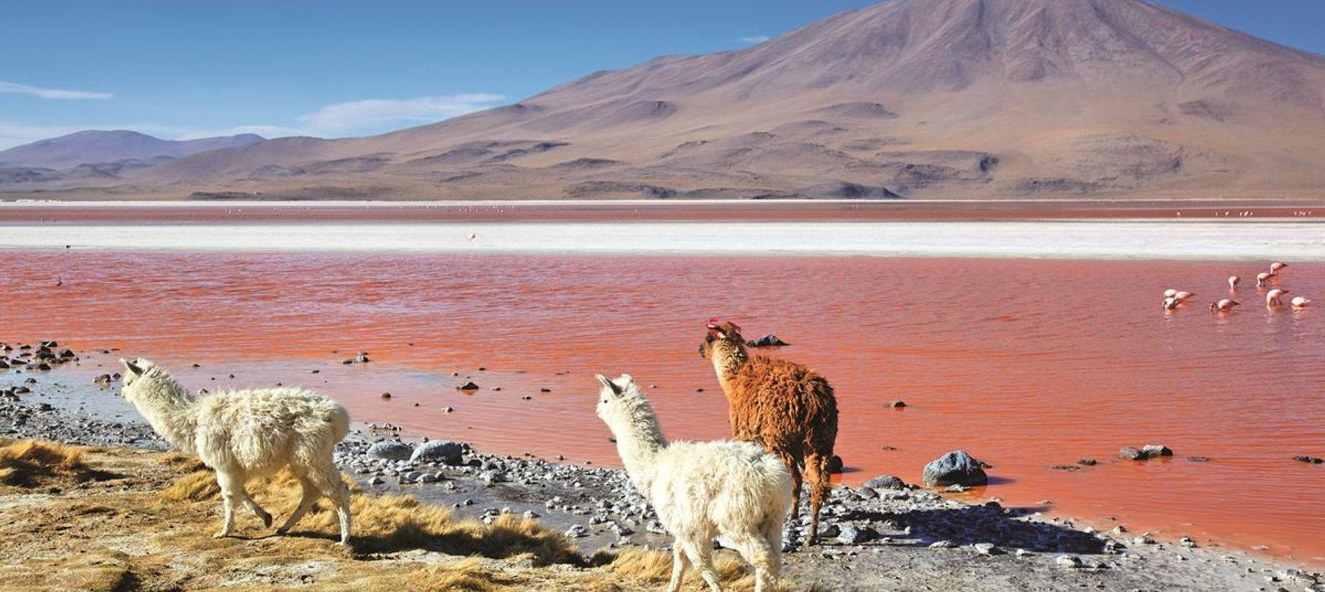 Bolivian salt flats (www.dreamstime.com)