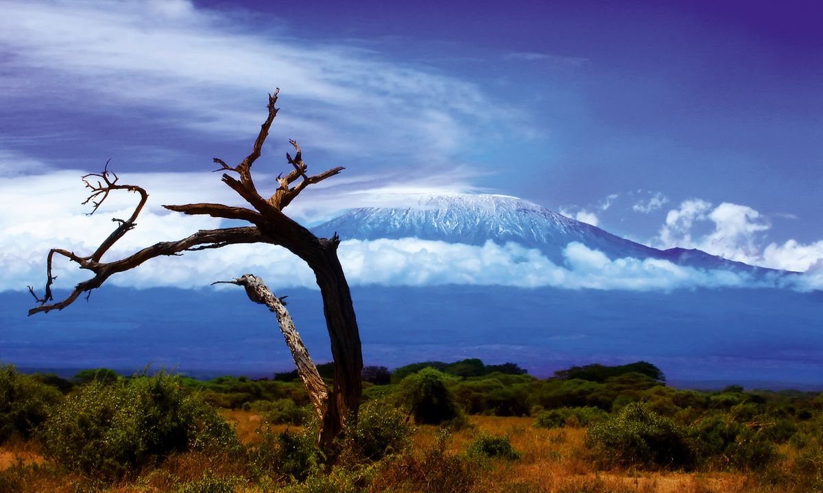 Kilimanjaro, Tanzania (Dreamstime)