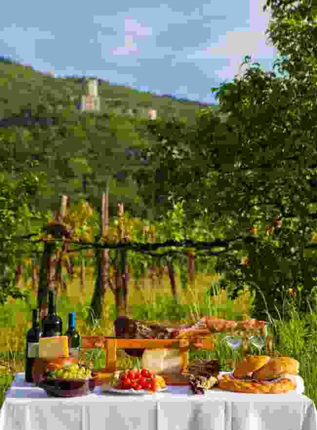 Slovenian vineyard (Slovenian Tourist Board)