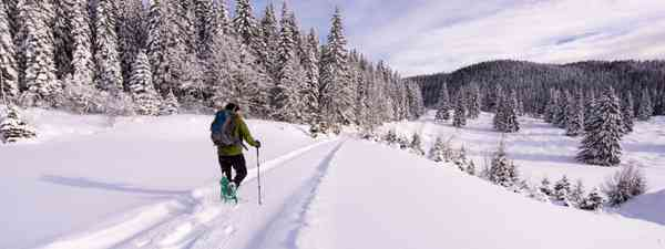 Snowshoeing in Pokljuka (Slovenian Tourist Board)