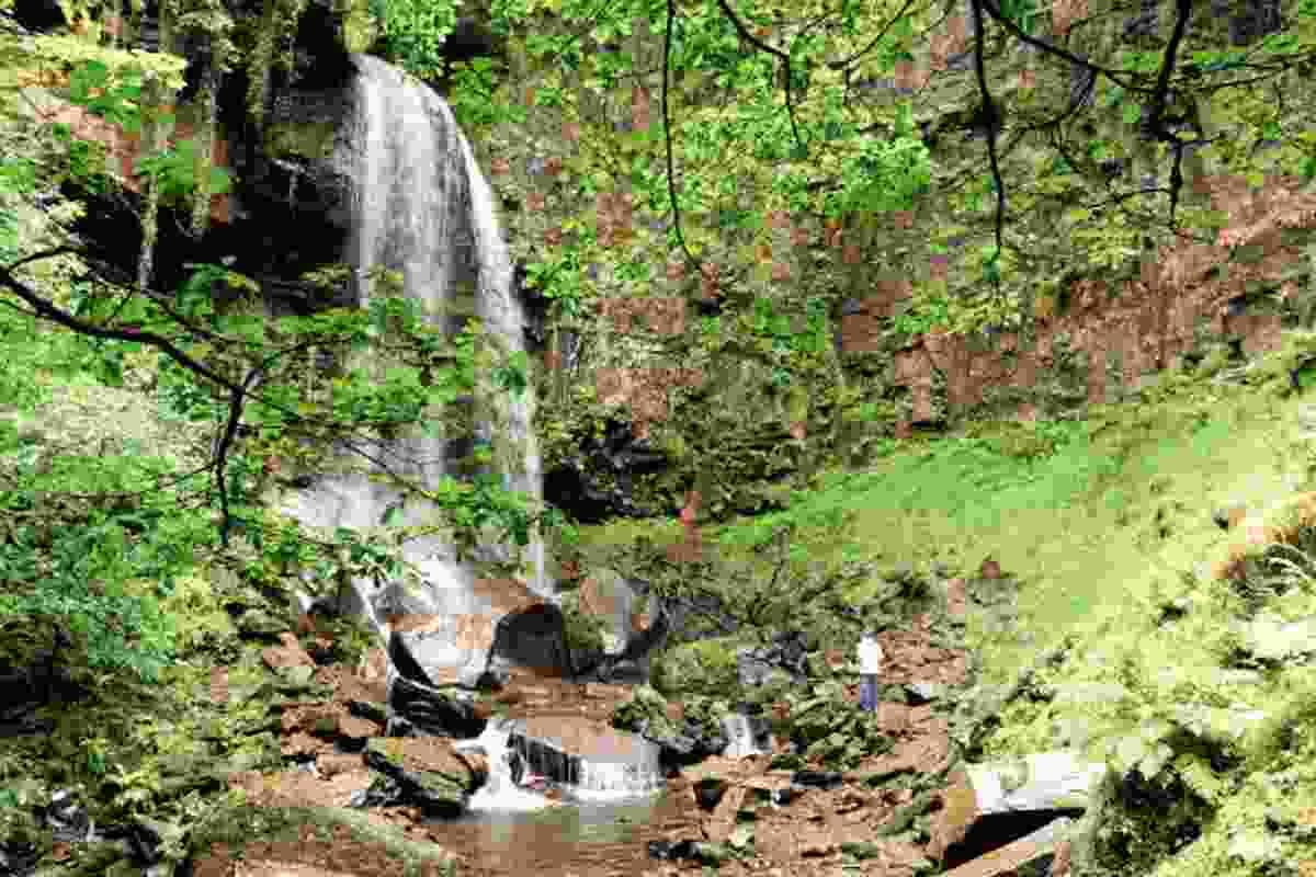 Melincourt Waterfall (Ray Jones)