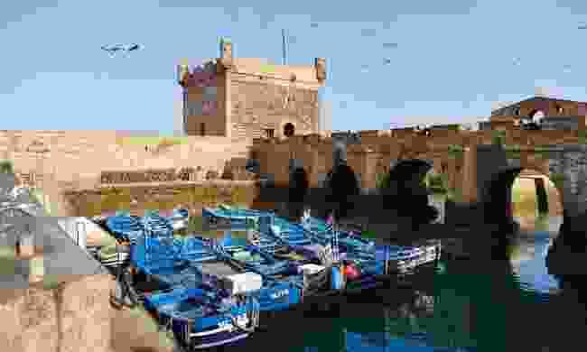 Essaouira's postcard-perfect port (Sarah Gilbert)