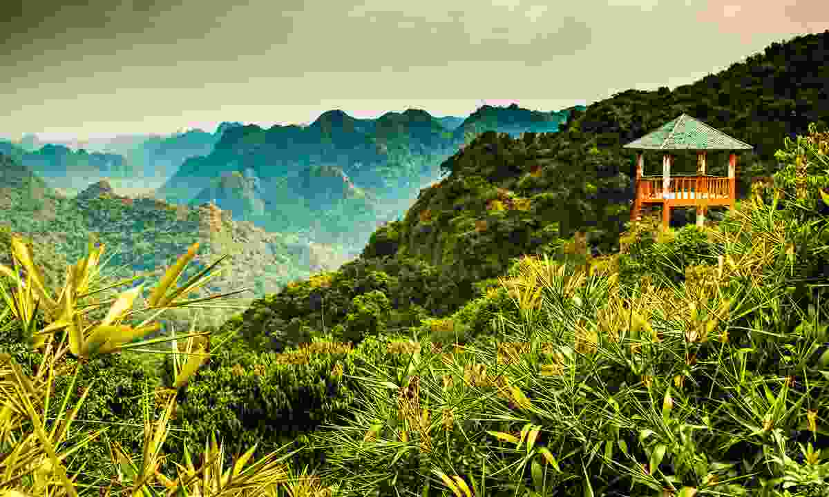 The incredible view from Cat Ba Island National Park's Ngu Lam Peak (Shutterstock)