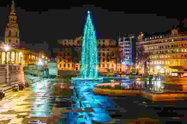 Trafalgar Square's Christmas tree (Shutterstock)