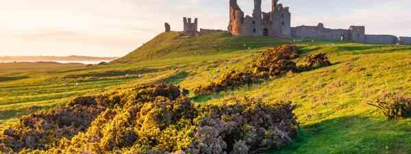 Dunstanburgh Castle (Shutterstock)