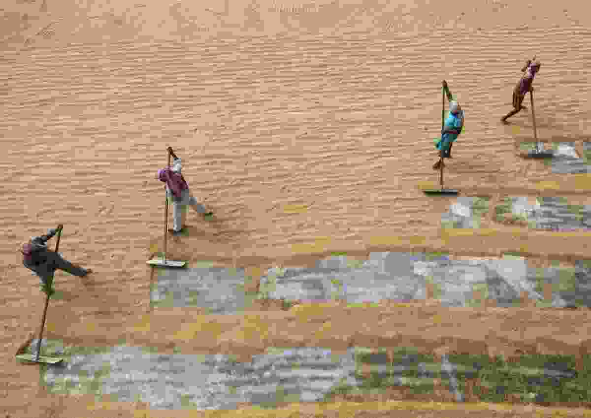 Rice workers in West Bengal, India (Sandipani Chattopadhyay)