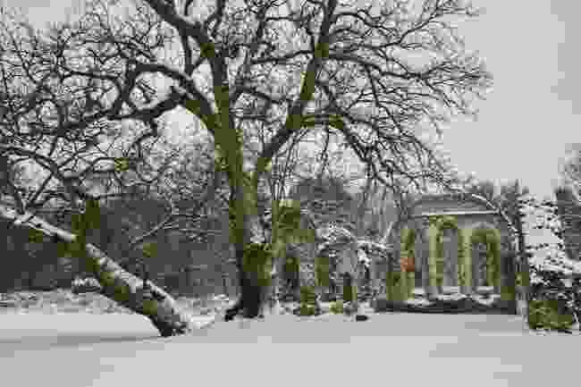 Waverley Abbey (Shutterstock)