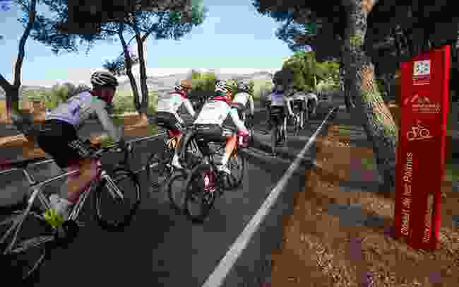 Make use of the many cycling paths in Castellón (Castellón Tourist Board)