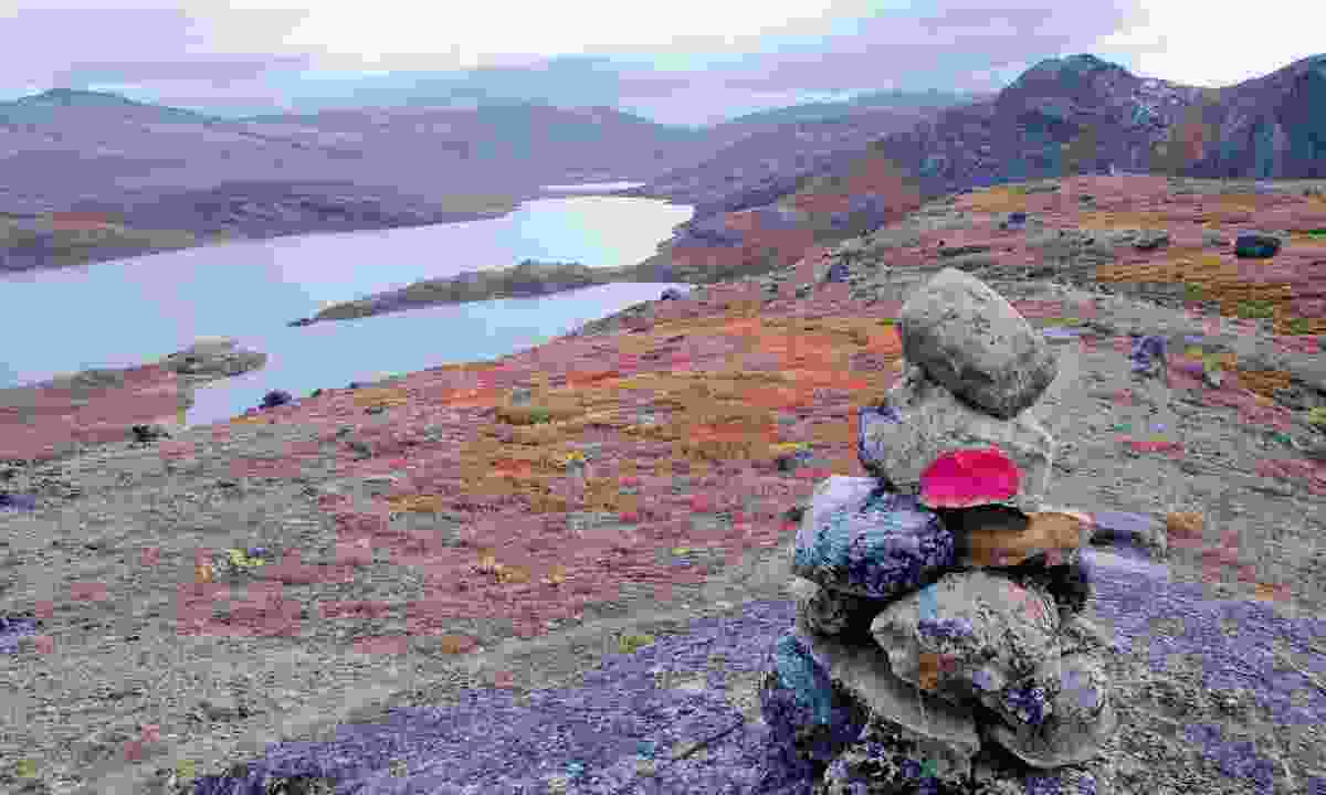 High on a plateau at the mid-point of the trail (Phoebe Smith)