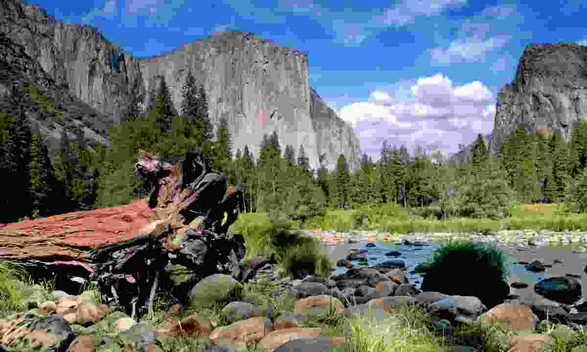El Capitan on a sunny day (Dreamstime)
