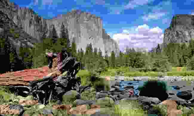 El Capitan on a sunny day (Dreamstime)