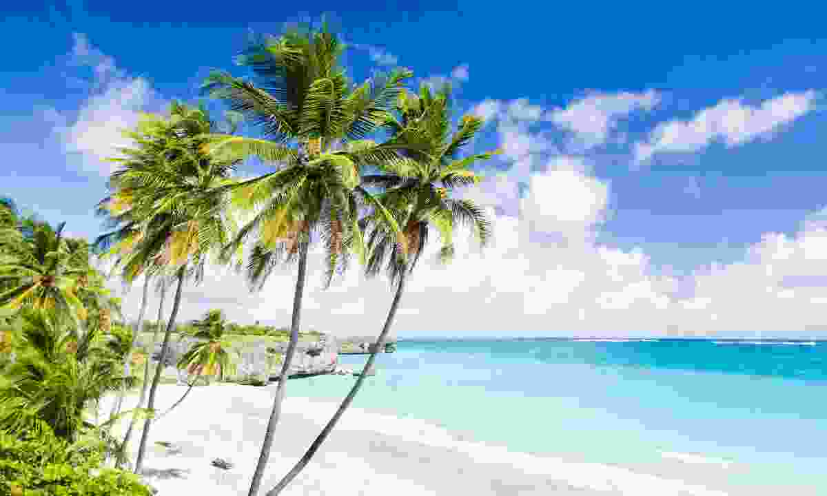 Princess Anne and Mark Phillips got restless on Barbados' beautiful beaches (Dreamstime)