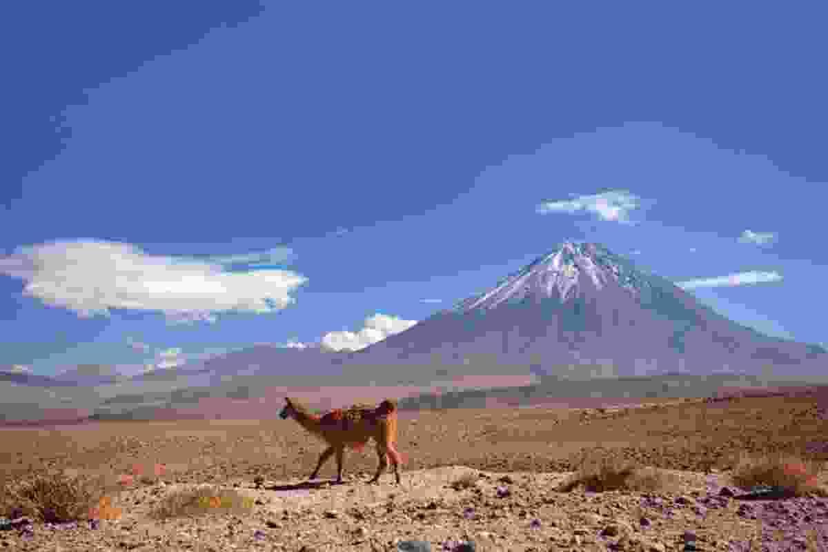 Atacama Desert, Chile. (iStock)