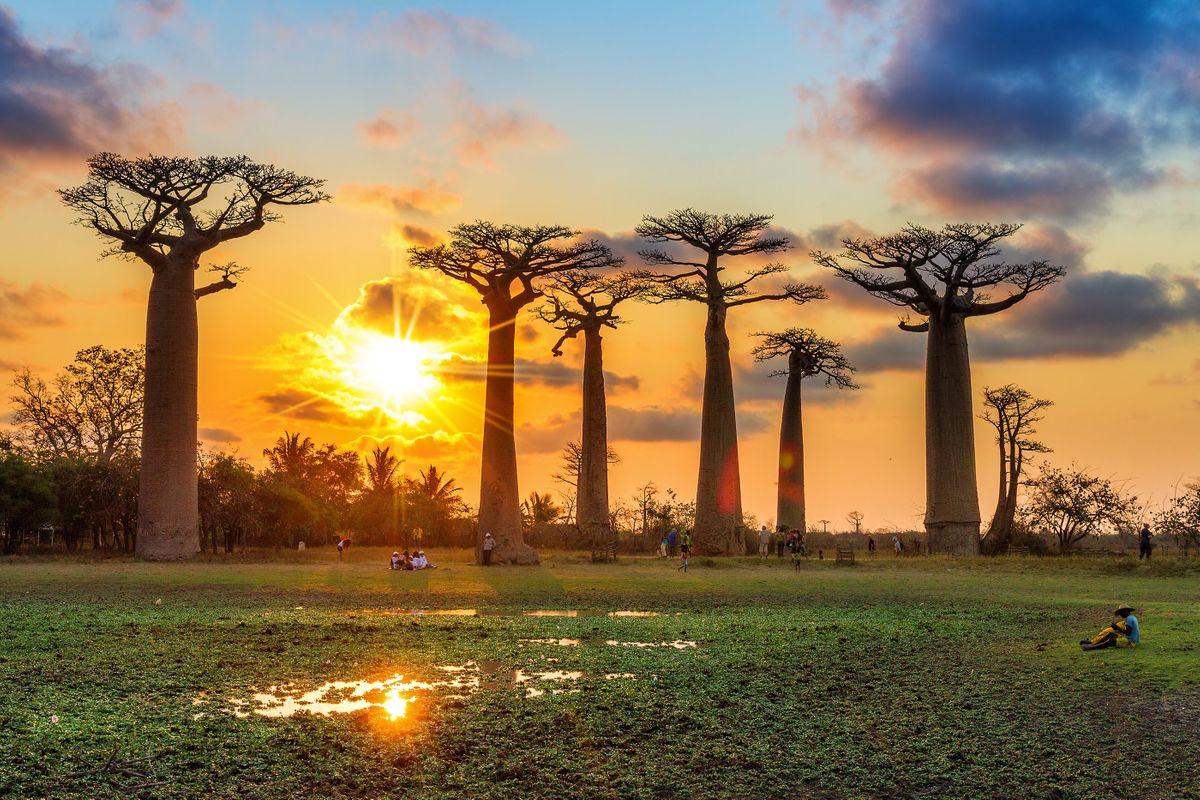 Quiz: Is This Travel Trivia True or False?