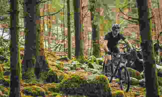 Head out on a mountain biking adventure in the UK this summer (Decathlon)
