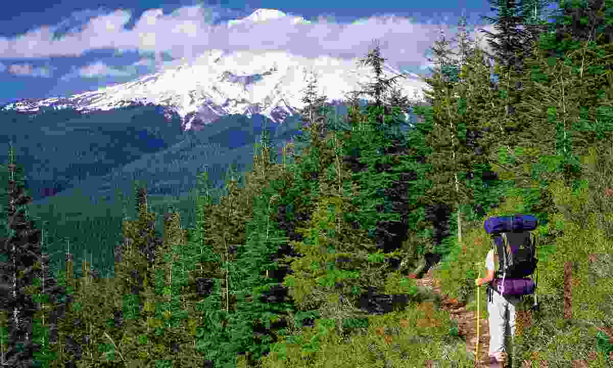 Hiking around Mt Hood (MthoodTerritory.com)