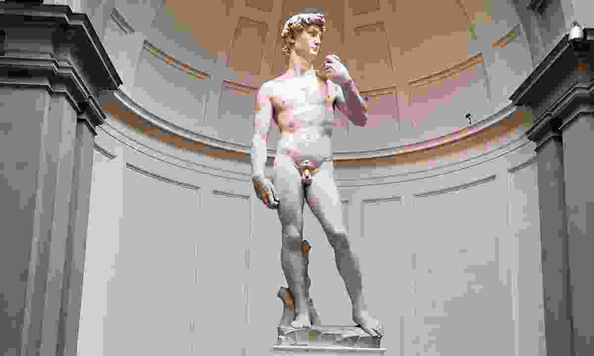Michelangelo's David (Ellie Kinsella)