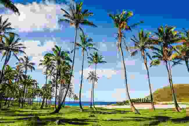 Anakena beach, Easter Island (Shutterstock)