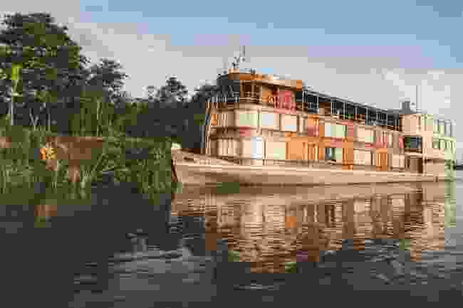 The Delfin ll (Delfin Amazon Cruises)