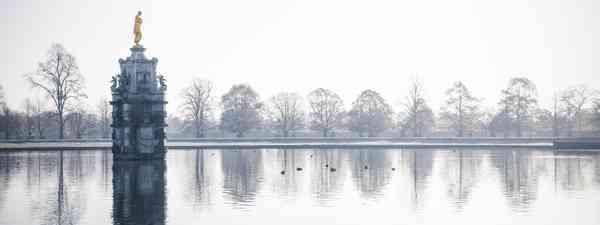 Bushy Park (Shutterstock)