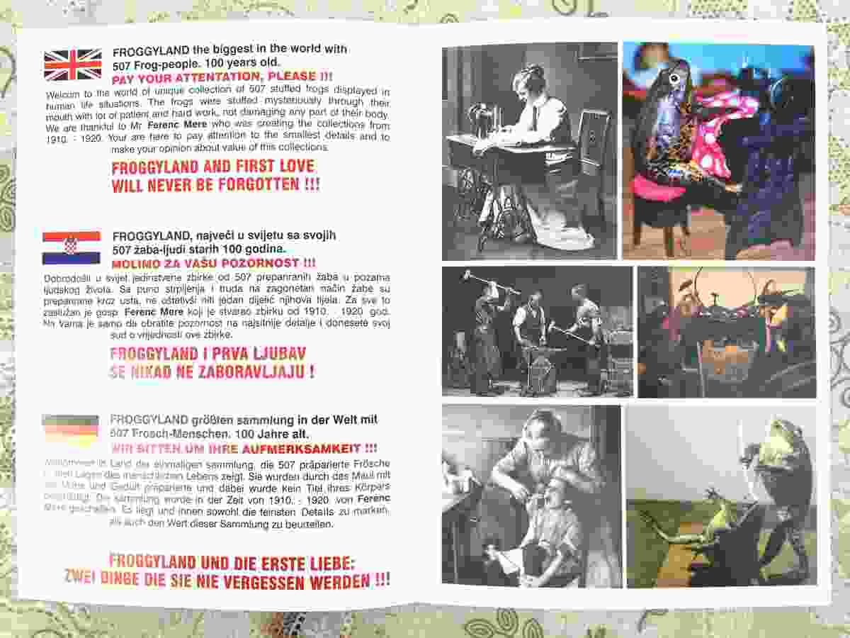 Froggyland brochure (Peter Moore)
