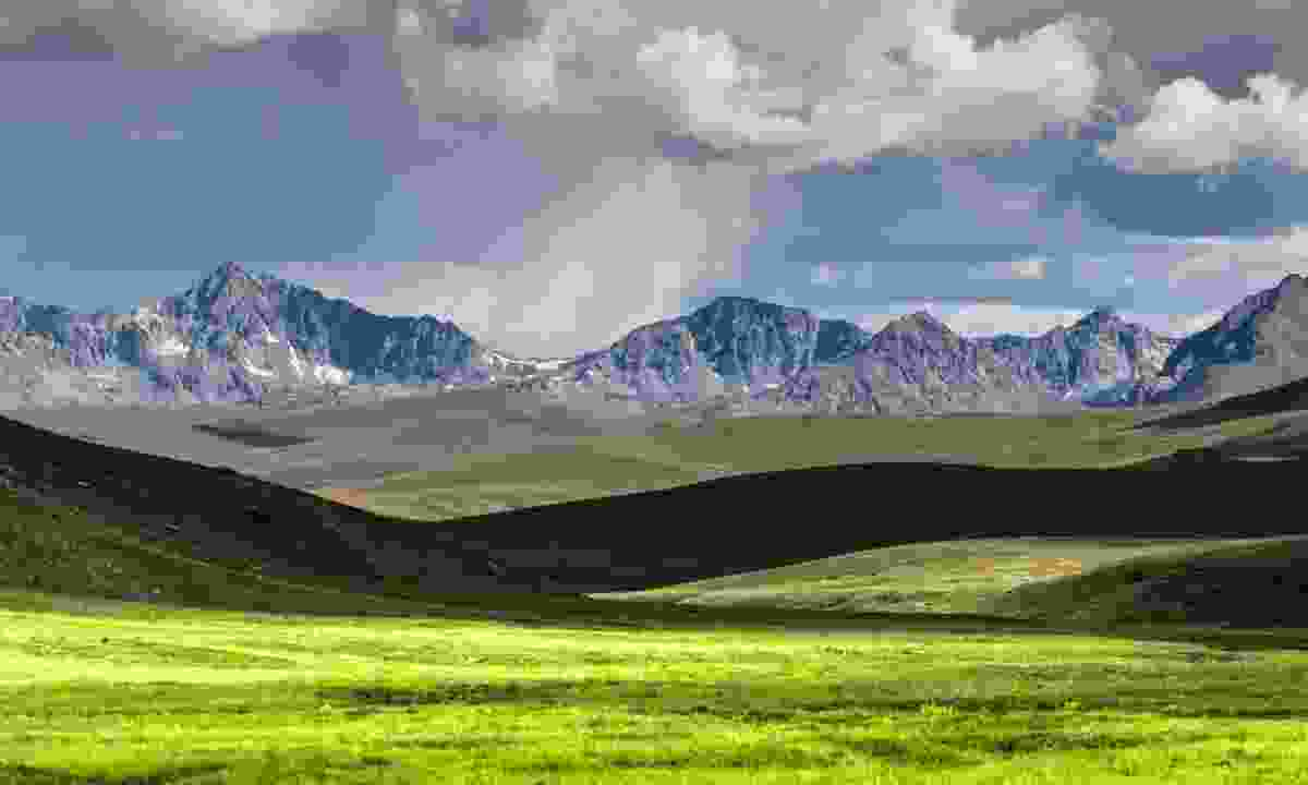The alpine pastures of the Deosai Plains (Shutterstock)