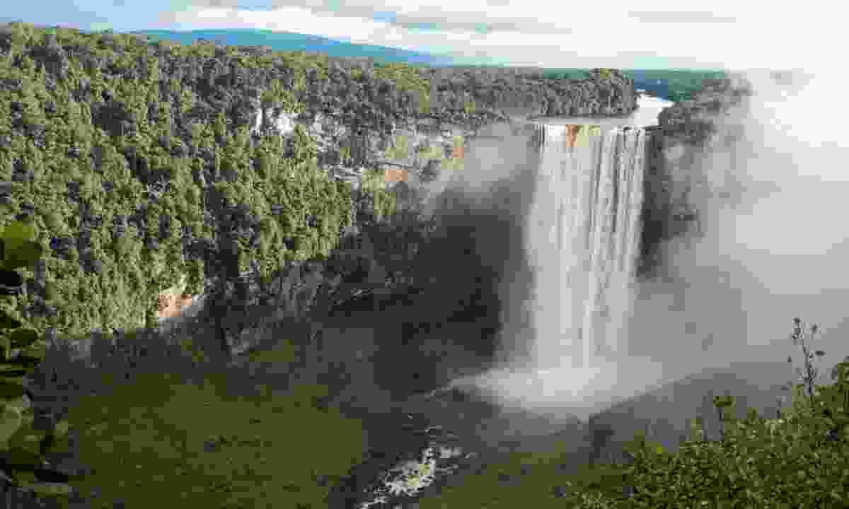 Kaieteur Falls (Simon Chubb)