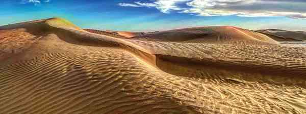 Sand dunes (Alice Morrison)