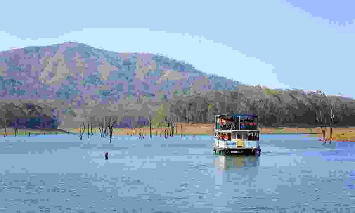Most people take a boat trip in Periyar National Park (Shutterstock)