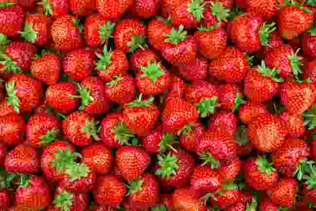 Strawberries, glorious strawberries! Smaller when found wild in the UK... (Shutterstock)