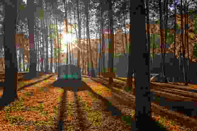 Keen to explore? Start with the basics of camping (Shutterstock)