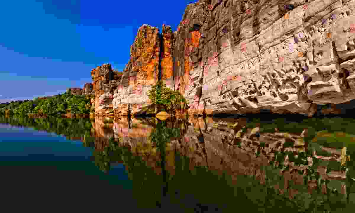 The Fitzroy River in the Kimberleys (Dreamstime)
