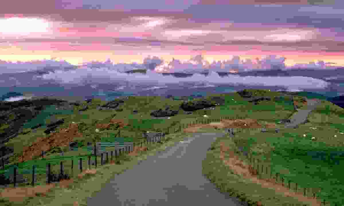 Powys, near Machynlleth (Shutterstock)