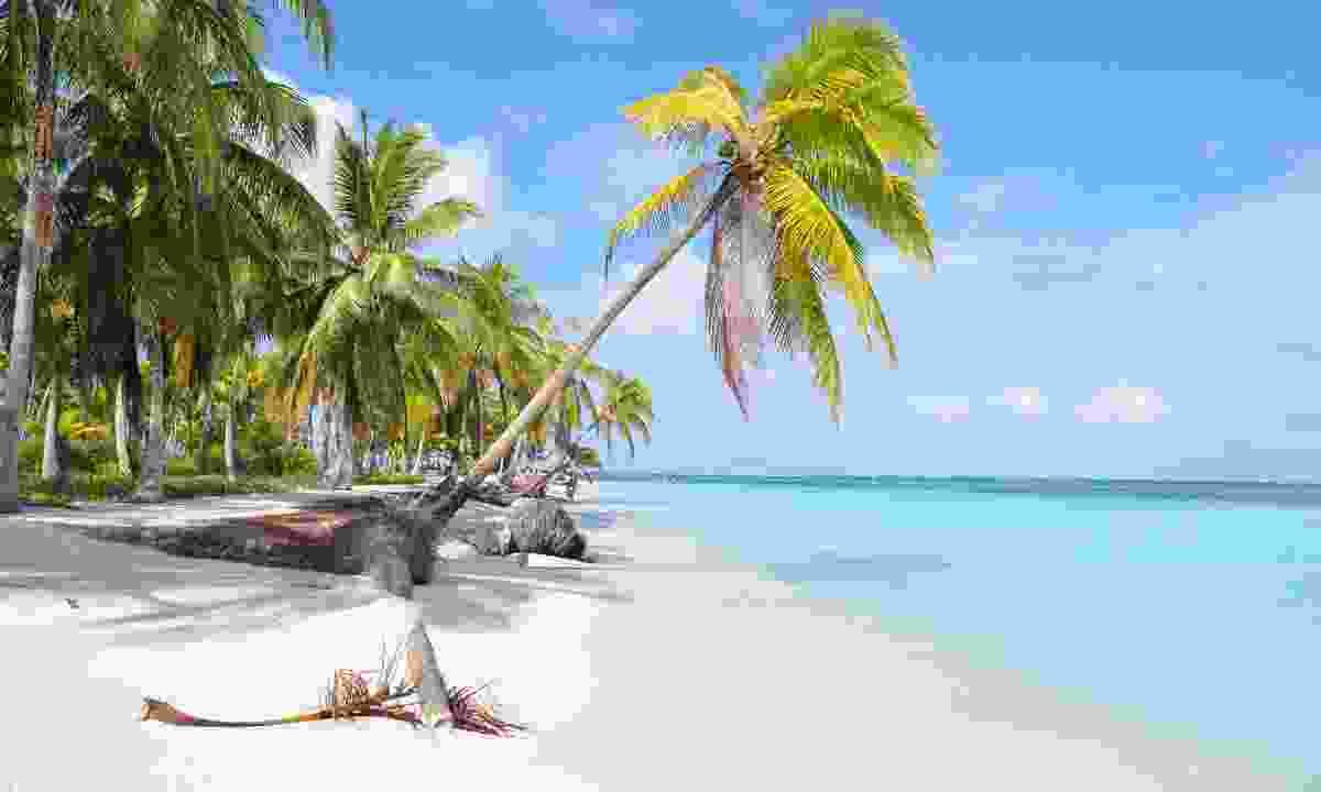 A beach on the San Blas islands (Shutterstock)